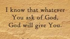 John 11:22