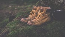 training-wilderness-proverbs-9-500x325