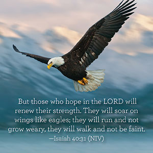 They Will Run And Not Grow Weary Faithgateway