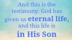 1 John 5 11