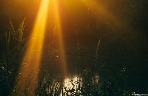 Fellowship: 7 Steps to Restoring Broken Relationships - FaithGateway