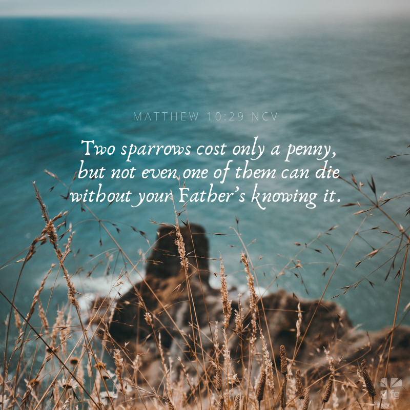 The Power of Praying In Jesus' Name, Amen - FaithGateway