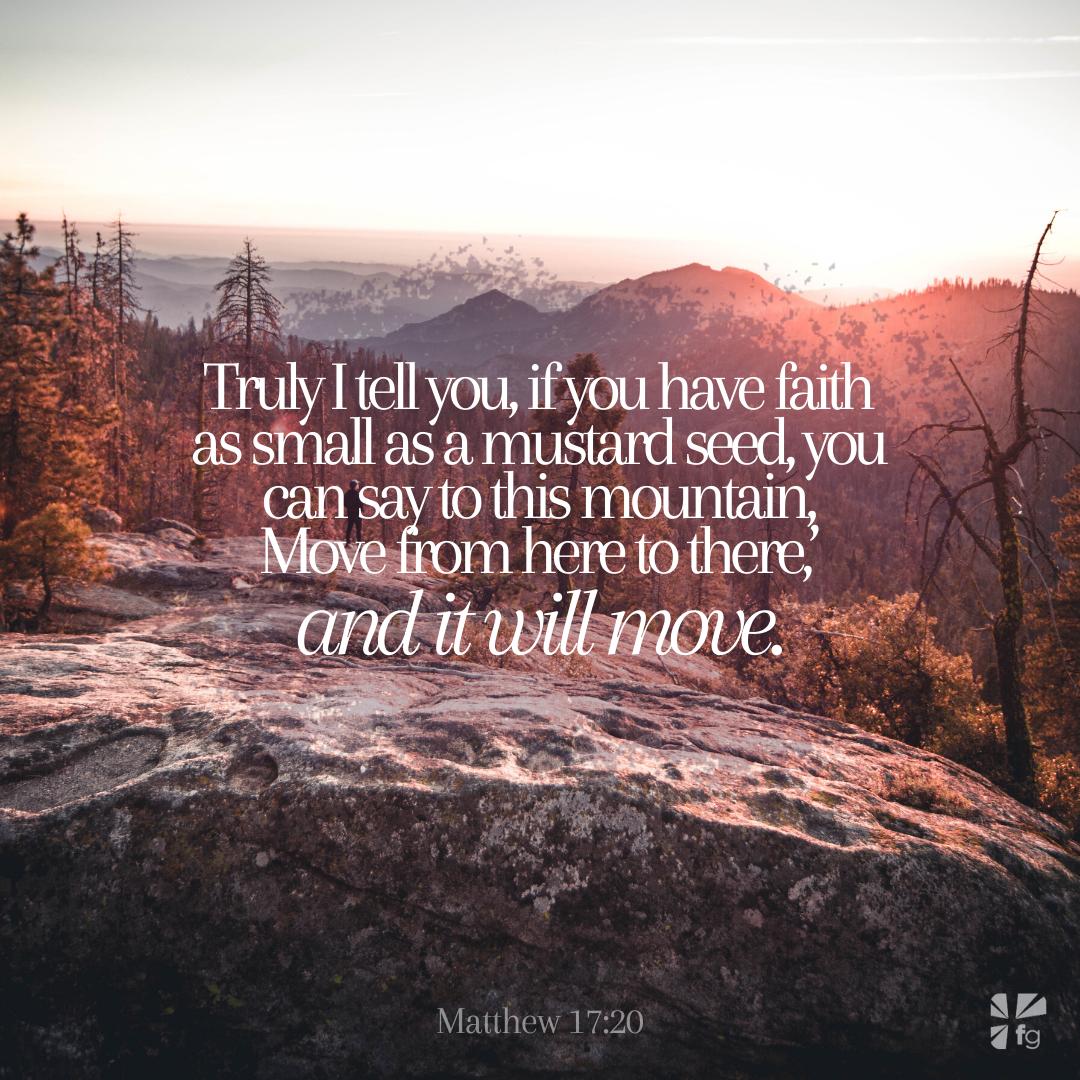 Matthew 17:20, NIV
