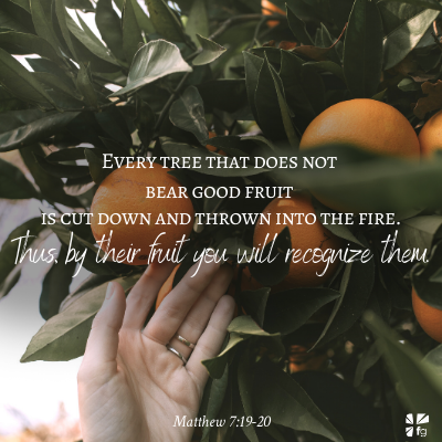 Matthew 7:19-20