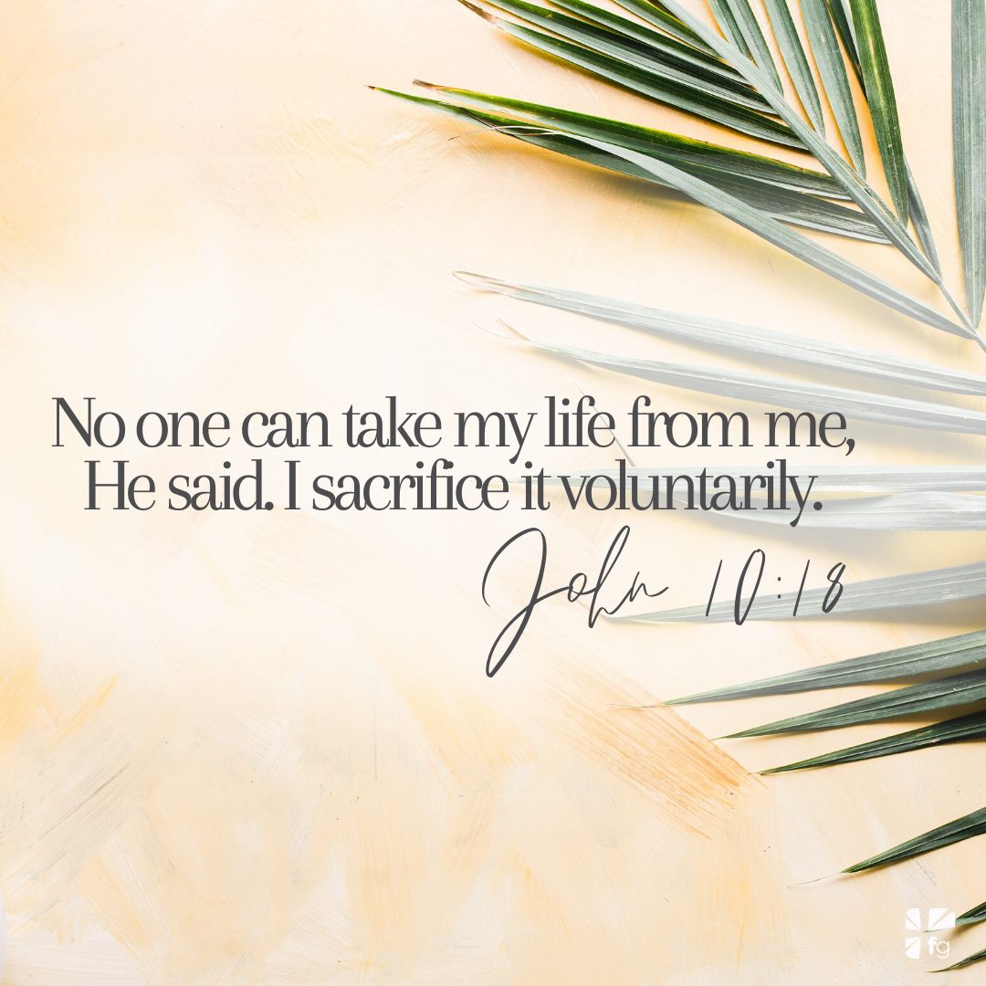No one can take my life from me, He said. I sacrifice it voluntarily. — John 10:18