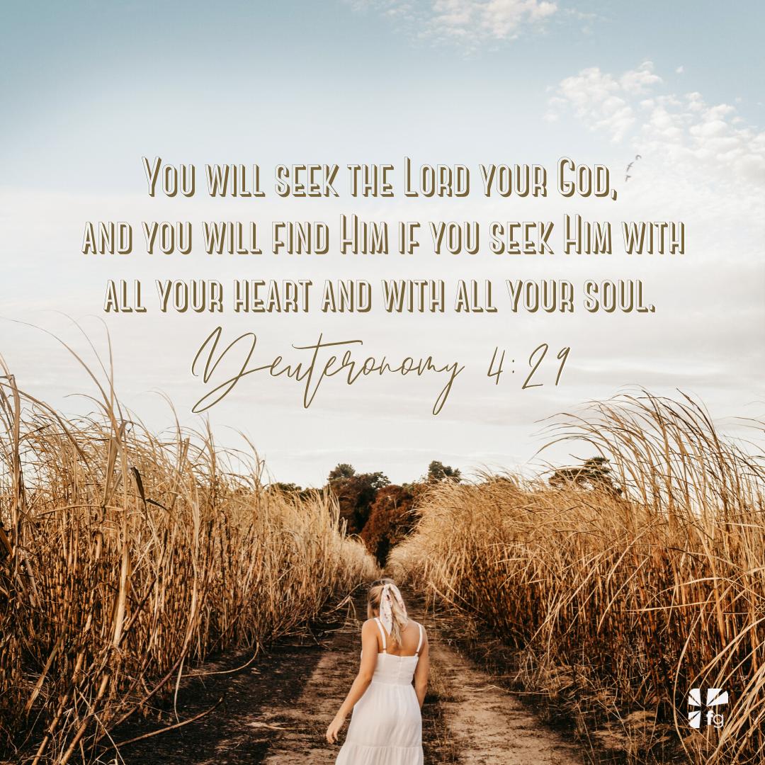 Deuteronomy 4:29 NKJV