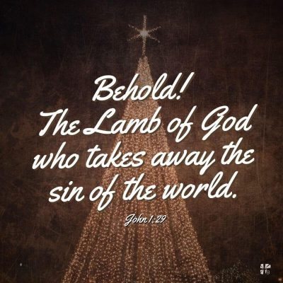 """""""Behold! The Lamb of God who takes away the sin of the world."""" John 1:29"""