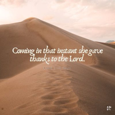 """""""Coming in that instant she gave thanks to the Lord."""" Luke 2:38"""