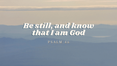Can you sit still in the Lord's presence? Stress can be crushing. We all know that, right? But, the Lord is ready for us to sit at His feet and touch us in a meaningful way with His Presence. What is it that you want more than that? Be still.