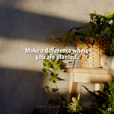 Make a difference where you are planted.