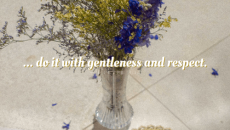 Staying gentle and respectful in today's political climate is… rare… to say the least! But, that's what we're called to be as believers in Christ! We represent Him and in order to show Him to the world around us, we have to embody love. It's a tall order, but with the Holy Spirit within us, we can do it!