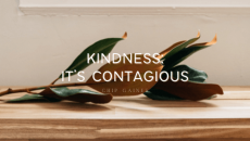 Let the spark of kindness begin with us! No one has to know what we do – just begin. Kindness costs, but it's so worth it! Who can you pay back with kindness today?