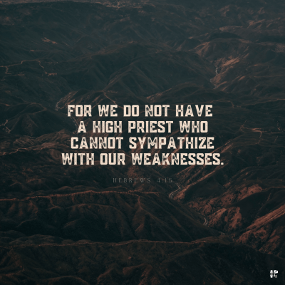 For we do not have a high priest who cannot sympathize with our weaknesses.