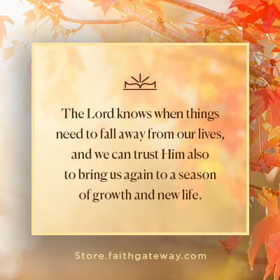 The Lord knows when things need to fall away from our lives, and we can trust Him also to bring us again to a season of growth and new life.