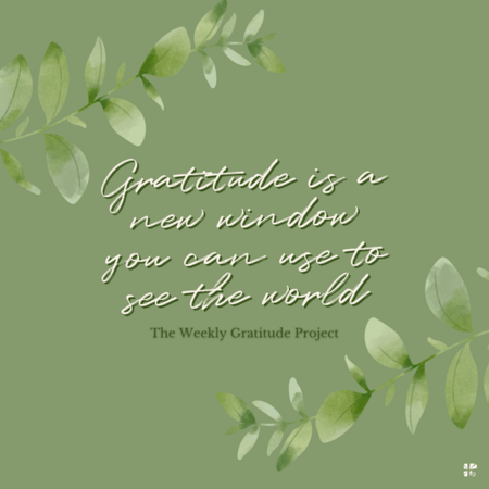 Gratitude is a new window you can use to see the world